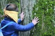 Découverte de la forêt par les Sens